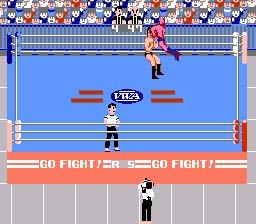 Pro Wrestling-3