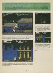 Game Player's Strategy Guide to Nintendo Games Issue 2 Pg. 048