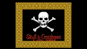 Skull & Crossbones (NES) Game Hub