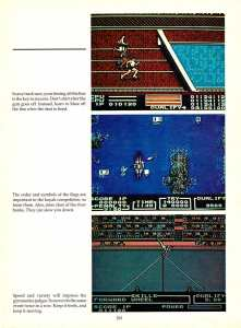 Game Player's Encyclopedia of Nintendo Games page 261