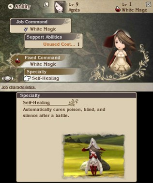 Screenshot-Bravely-Default-3ds-E