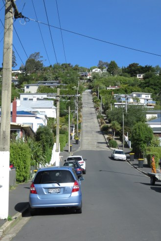Baldwin Street ou la rue habitée la plus pentue selon le guiness book.
