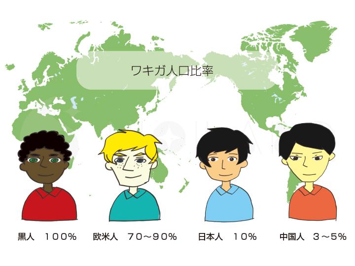 世界で見るワキガの比率