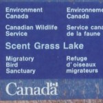 Bird sanctuary signs