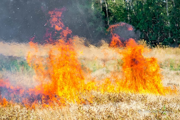 Grass fire Source Joanne Francis/Nipawin News