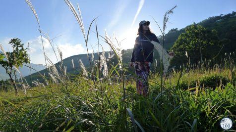 Randonner dans les monts Yufu à Yufuin