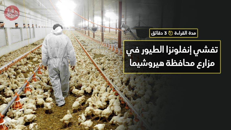 تفشي إنفلونزا الطيور في مزارع محافظة هيروشيما