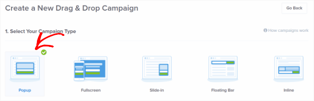 choose campaign type - How to Create a Popup Coupon that Boosts Sales
