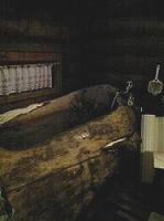 丸太をくりぬいた風呂