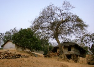 সেদিনের কাঙ্ক্ষিত 'রুমানা পাড়া' (ছবি: নাকিব)