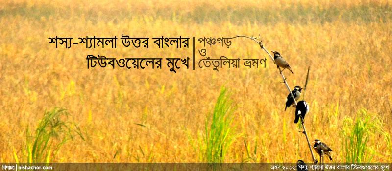 ভ্রমণ ২০১২ : শস্য-শ্যামলা উত্তর বাংলার টিউবওয়েলের মুখে (১)