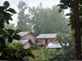 চান্দা পাড়ায় ভোর - নিশাচর