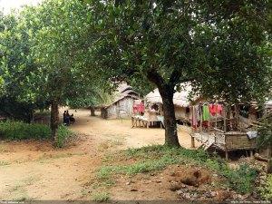 খামতাং পাড়া