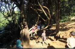 দলিয়ান পাড়ায় বৃক্ষ-দোলনায় দোল খাচ্ছেন ইতি আপু (ছবি: মোহন)
