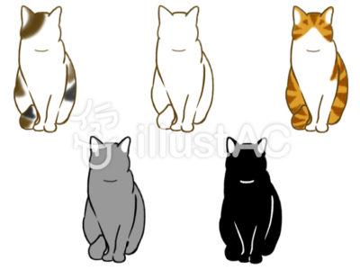 猫基本姿勢