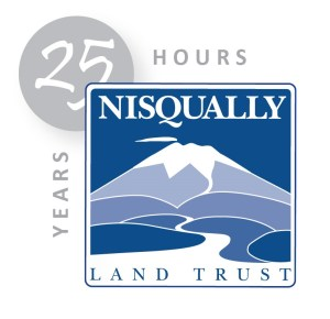 25 Hours Campaign Logo