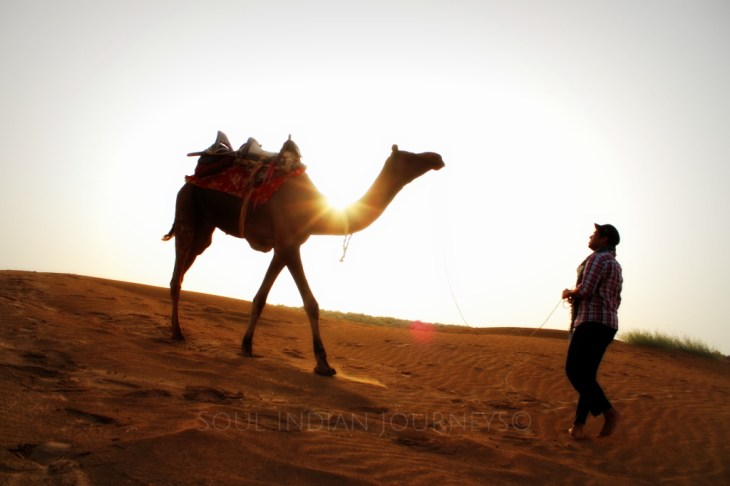 Desert Safari in Jaisalmer