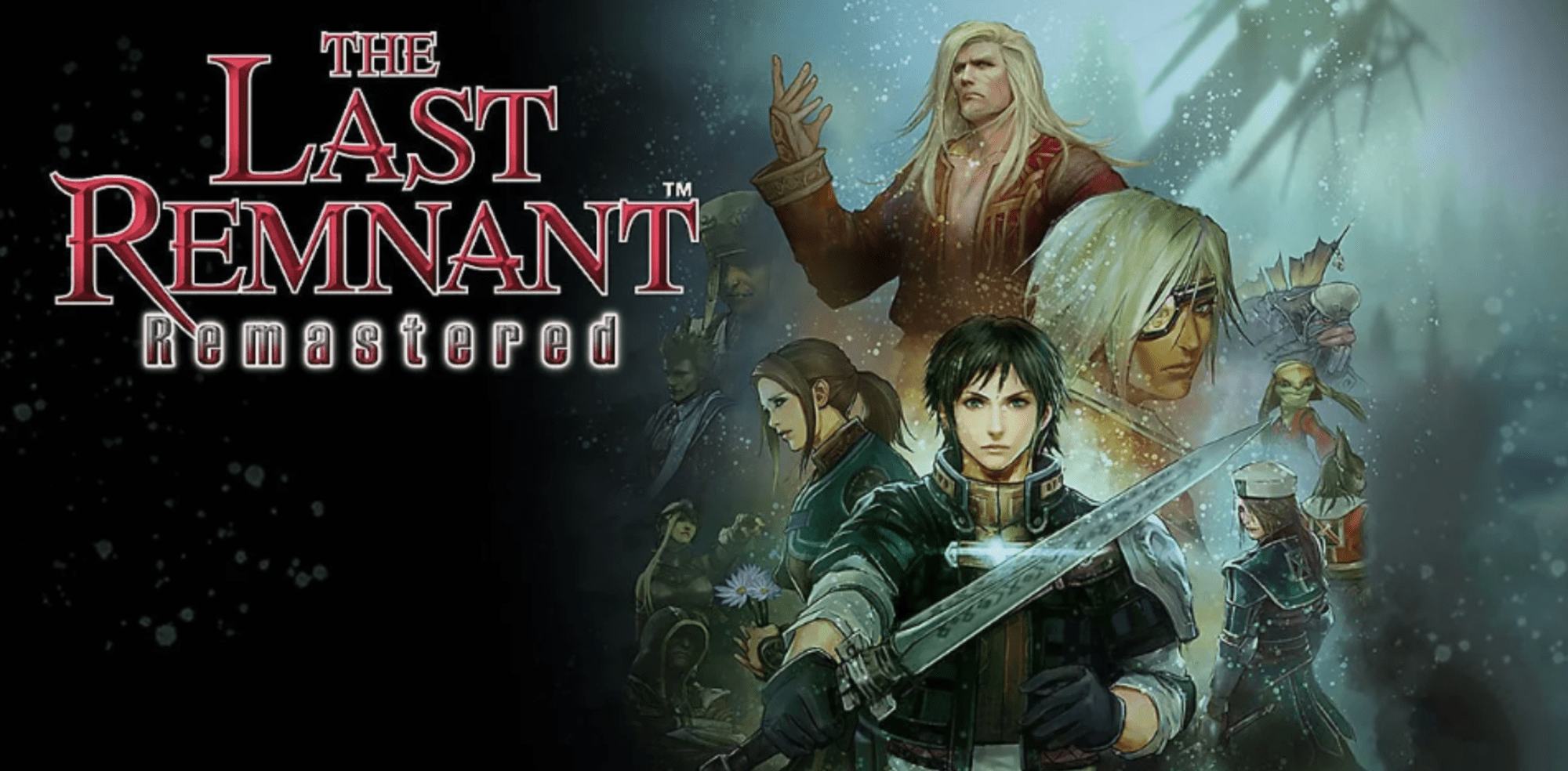 The Last Remnant on Switch