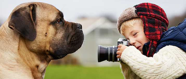 8 Tips for Taking the Perfect Photo of Your Pet