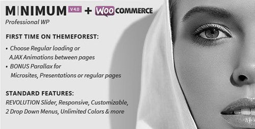 ThemeForest - MINIMUM v4.0 - Professional WordPress Theme - 4084338