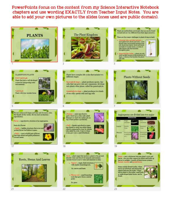 2383425 Page 5 - Plants: Life Science Notes, PowerPoint & Test ~ EDITABLE