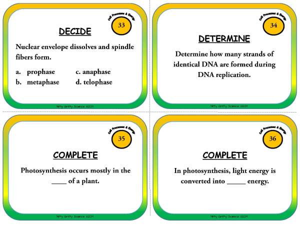 Cell Processes and Energy Page 11 - Cell Processes and Energy - Life Science Task Cards