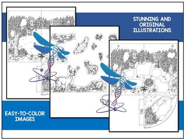 Deciduous Preview 2 - Deciduous Forest Biome Model - 3D Model - Biome Project