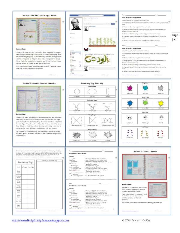 Demo GENETICS The Science of Heredity Page 4 - Genetics: The Science of Heredity