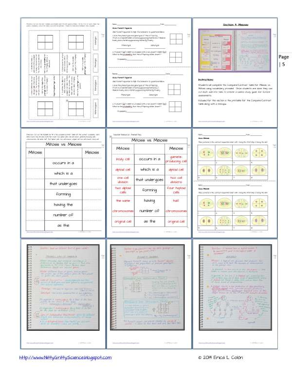 Demo GENETICS The Science of Heredity Page 5 - Genetics: The Science of Heredity