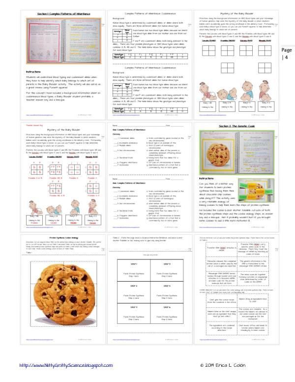 Demo MODERN GENETICS Page 4 - Modern Genetics