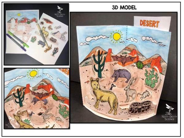 Desert Preview 1 - Desert Biome Model - 3D Model - Biome Project