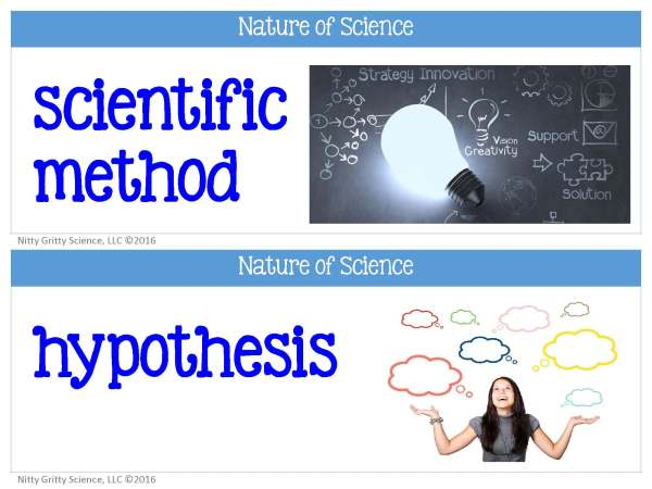 Nature of Science FREE word wall set.pdf Page 1 - Nature of Science - Word Wall FREEBIE