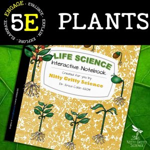 Slide2 1 - Plants