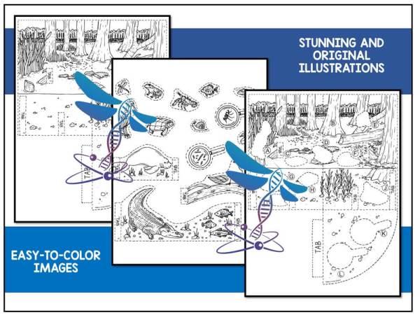 Wetlands Preview 2 - Wetland Biome Model - 3D Model - Biome Project