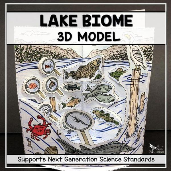 lake biome model 3d model biome project featured image - Lake Biome Model - 3D Model - Biome Project