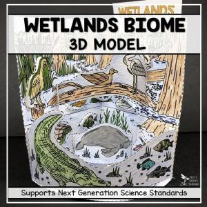 wetland biome model 3d model biome project featured image - Wetland Biome Model - 3D Model - Biome Project