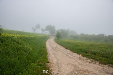 NK-EuroTrip-Day9-27