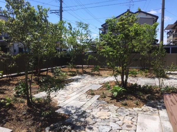 散歩できる庭2