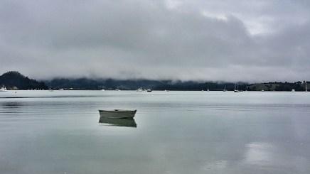 Misty Coromandel morning