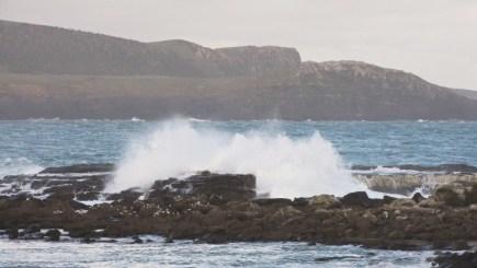porpoise bay waves