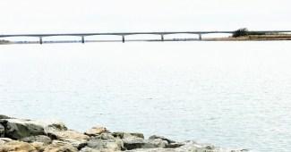 仁淀川河口大橋
