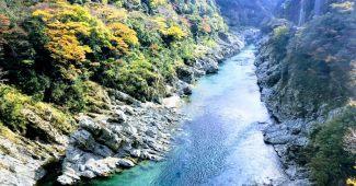吉野川の川下り