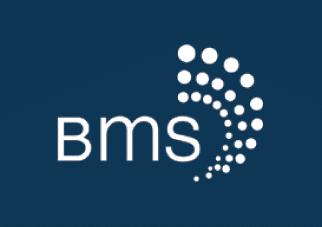 BMS Inc.
