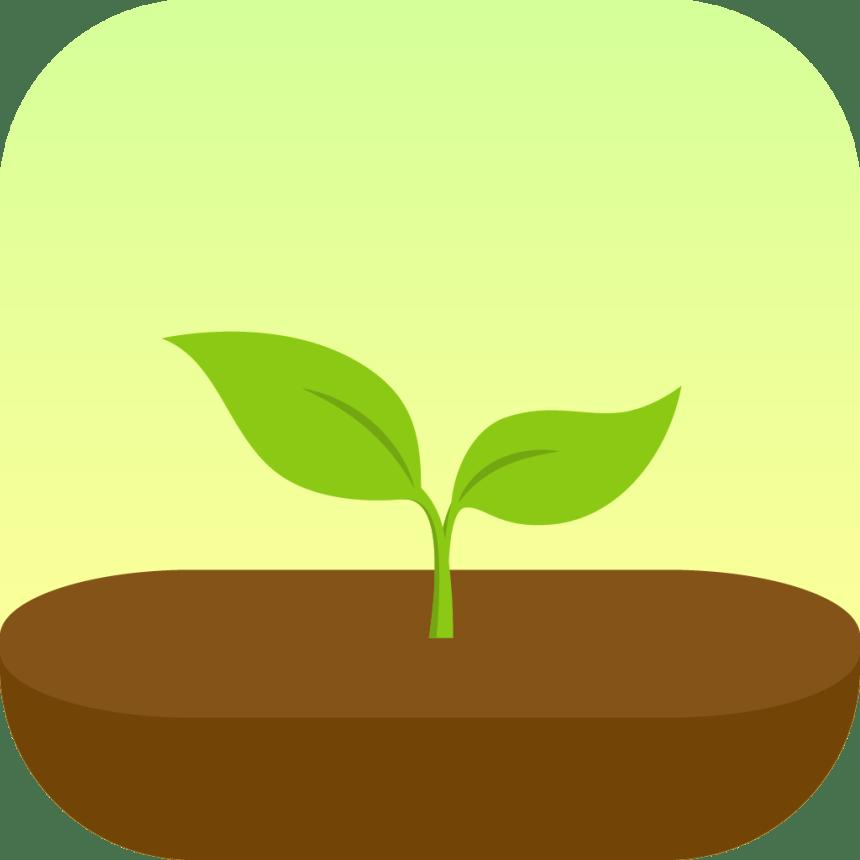 Flora App Review