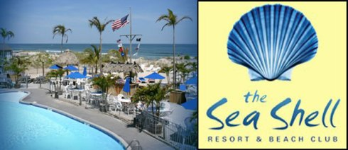 Image result for seashell lbi