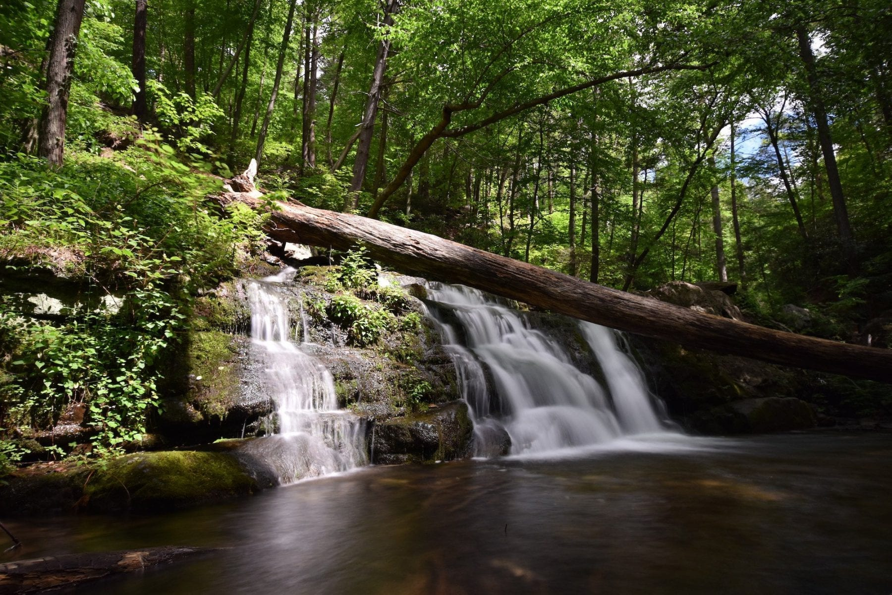 5 Best Waterfall Hikes in New Jersey