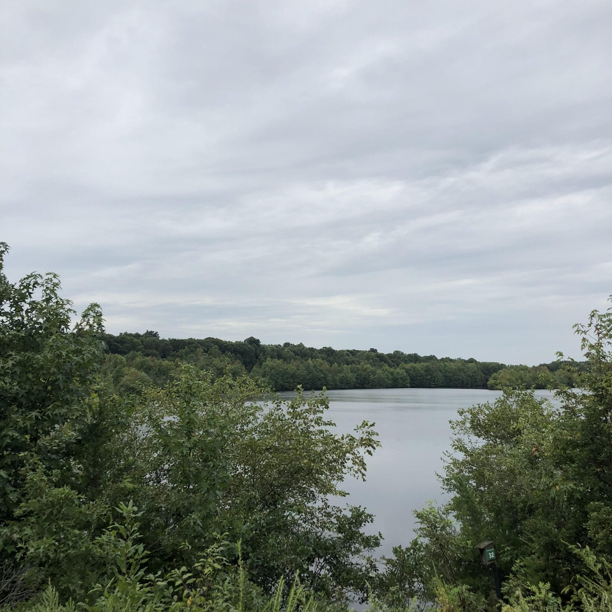 Peaceful Hiking in Central Jersey at Plainsboro Preserve