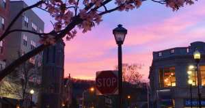 Downtown Dreaming in Montclair
