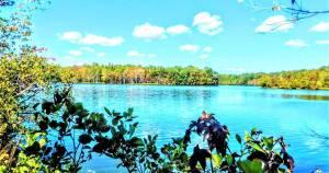 Central Jersey's Serene Plainsboro Preserve