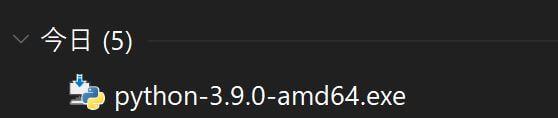 Python-ダウンロードファイル確認